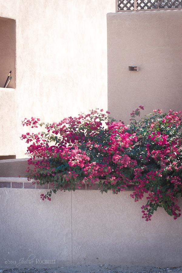 Arizona_03