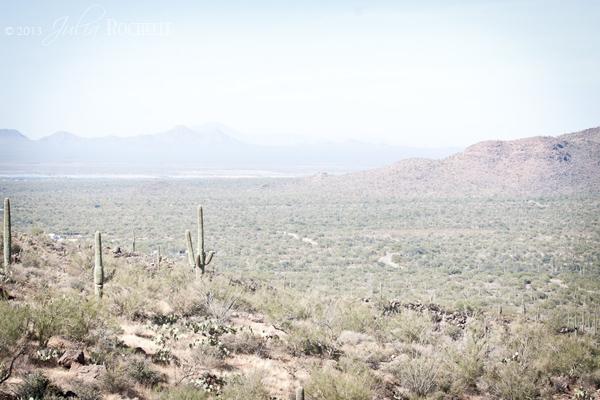 Arizona_05