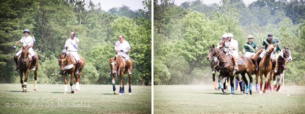 Polo Ponies 6