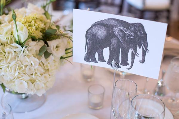 elephant-table-identifier
